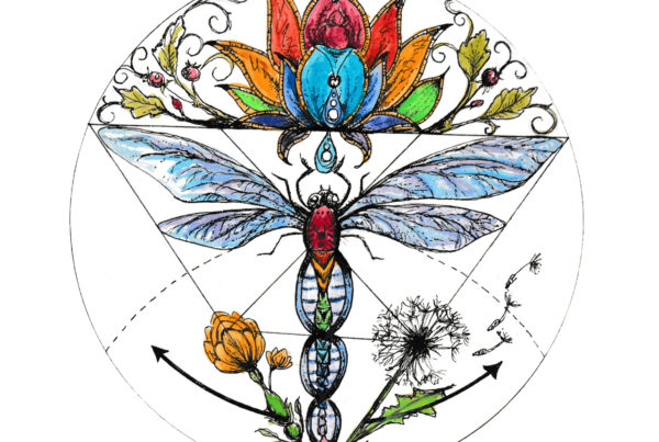 Rainbow colored flower, dragonfly sacred geometric drawing.