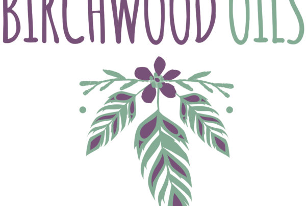 Pretty floral and feather logo, purple and sage green.