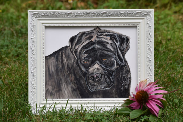 Illustration, Drawing, English Mastiff, Art, Dog, Pet Portrait, Dog
